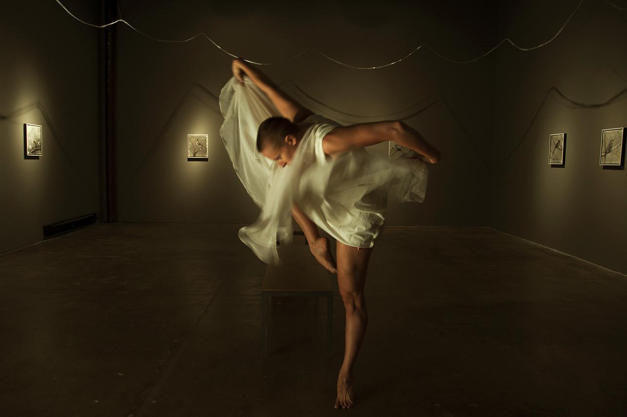 {254}Dance-Fest